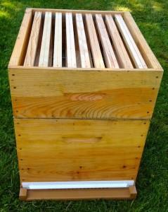 Hausse ruche Dadant posée sur la grille à reine