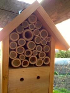 nichoir pour insectes